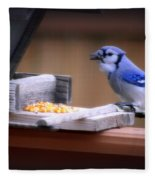 Blue Jay On Backyard Feeder Fleece Blanket