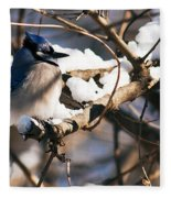 Blue Jay Staying Warm Fleece Blanket