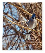 Blue Jay Thinking Fleece Blanket