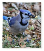 Blue Jay With A Piece Of Corn In Its Mouth Fleece Blanket