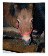 Blue Pony Eyes Fleece Blanket