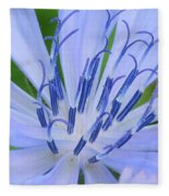 Blue Wildflower Fleece Blanket