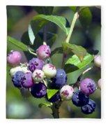 Blueberry Bunch With Raindrops Fleece Blanket