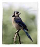 Bluejay - Bird Fleece Blanket