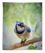 Bluejay In A Tree Fleece Blanket