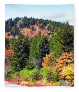 Blueridge Parkway View Near Mm 423 Fleece Blanket