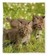 Bobcat Kittens Fleece Blanket