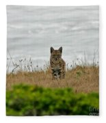 Bodega Bay Bobcat Fleece Blanket