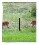 Bookend Twin Bucks Fleece Blanket
