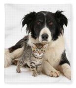 Border Collie And Kitten Fleece Blanket