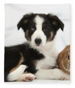 Border Collie Pup And Netherland-cross Fleece Blanket