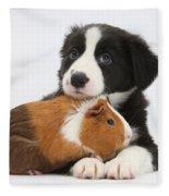 Border Collie Pup And Tricolor Guinea Fleece Blanket