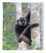 Bornean White-bearded Gibbon Fleece Blanket