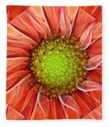 Botanical Swirl Fleece Blanket