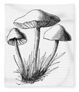 Botany: Mushroom Fleece Blanket