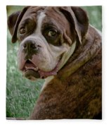 Boxer Smiles Fleece Blanket