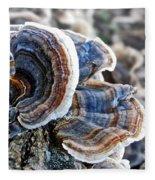 Bracket Fungi - Fungus Fleece Blanket