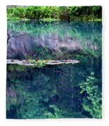 Branch And Reflections At Alley Spring State Park Fleece Blanket