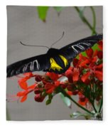 Brazilian Moth Fleece Blanket