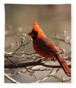 Bright Bold - Cardinal Fleece Blanket