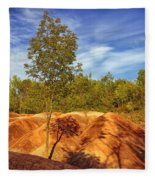 Bright Light On The Badlands Fleece Blanket