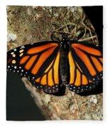 Bright Orange Monarch Butterfly Fleece Blanket