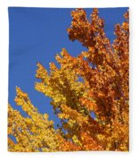 Brilliant Fall Color And Deep Blue Sky Fleece Blanket