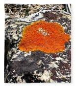 Brilliant Orange Lichen Fleece Blanket