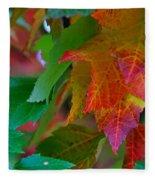 Brilliant Red Maple Leaves Fleece Blanket