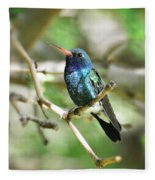 Broad-billed Hummingbird  Fleece Blanket