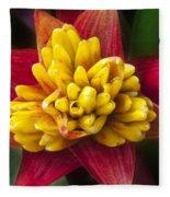 Bromiliad Blossom Fleece Blanket