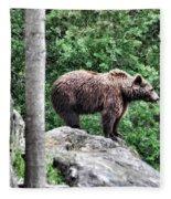 Brown Bear 208 Fleece Blanket