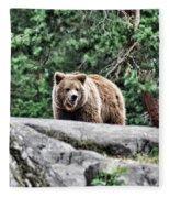 Brown Bear 209 Fleece Blanket