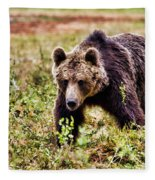 Brown Bear 210 Fleece Blanket