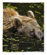 Brown Bear Swimming Fleece Blanket