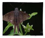 Brown Butterfly Dorantes Longtail Fleece Blanket