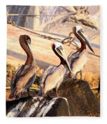 Brown Pelican - Holding Things Together Fleece Blanket