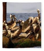 Brown Pelicans - Beauty Of Sand Island Fleece Blanket