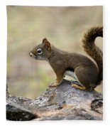 Brown Squirrel In Spokane Fleece Blanket