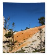 Bryce Canyon Character Fleece Blanket