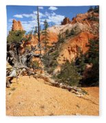 Bryce Canyon Forest Fleece Blanket