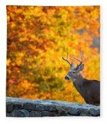 Buck In The Fall 06 Fleece Blanket