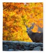 Buck In The Fall 07 Fleece Blanket