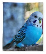 Budgerigar - Parakeet Fleece Blanket