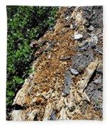 Bug Filled Bear Clawed Log Fleece Blanket