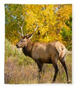 Bull Elk Autum Portrait Fleece Blanket