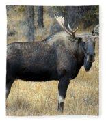Bull Moose, Peter Lougheed Provincial Fleece Blanket
