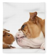 Bulldog & Guinea Pig Fleece Blanket