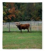 Bully Bull Fleece Blanket