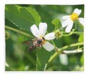 Bumble Bee 1 Fleece Blanket